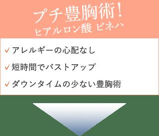 ヒアルロン酸(ピネハ)