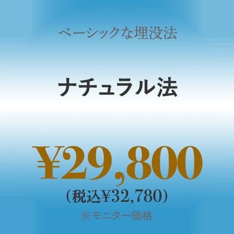 ベーシックな埋没法 ナチュラル法 ¥28,000